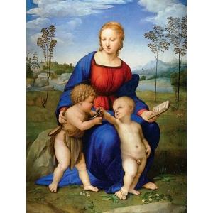 Madonna del Cardellino di Raffaello
